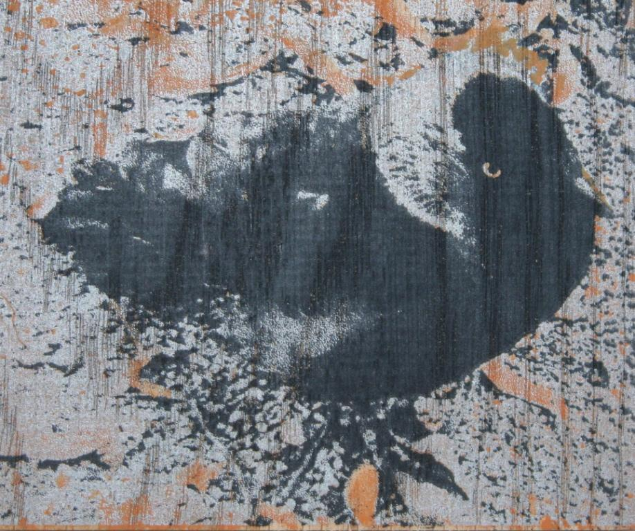 Kauwtje zeefdruk-acryl op hout 10 x 12