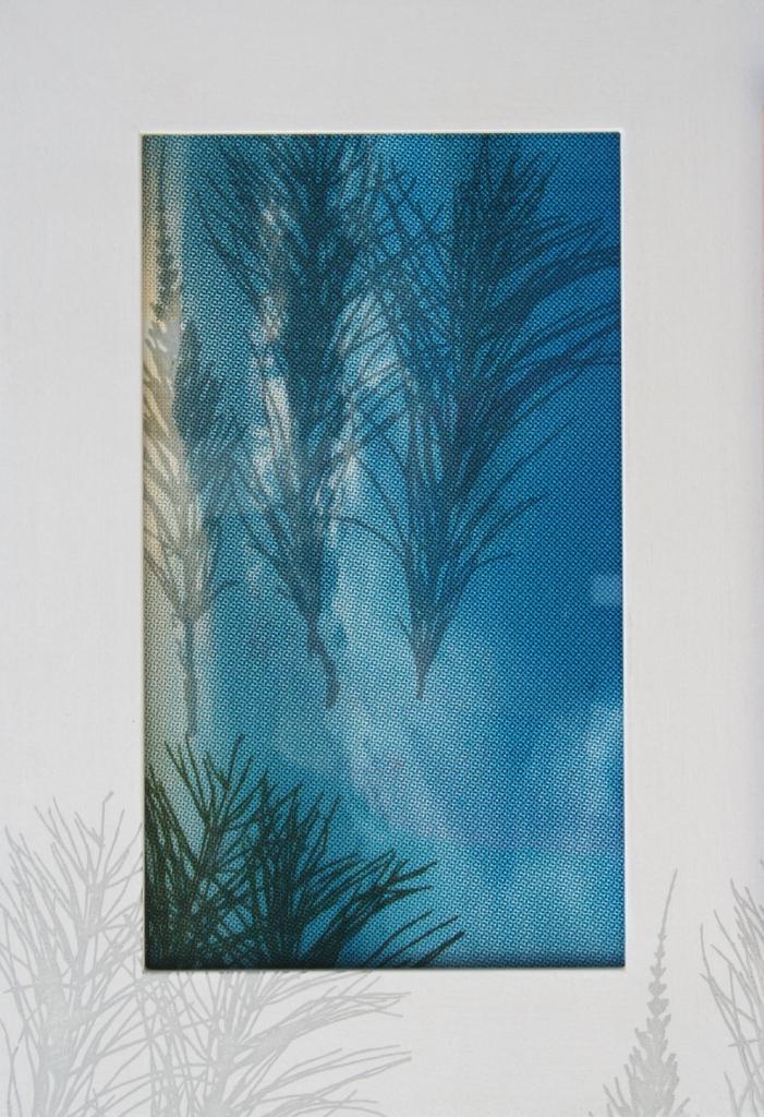 Lidstengel  zeefdruk op glas-papier-lijst gedroogde plant 38 x 25 cm